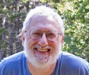 Roger Gottlieb, author