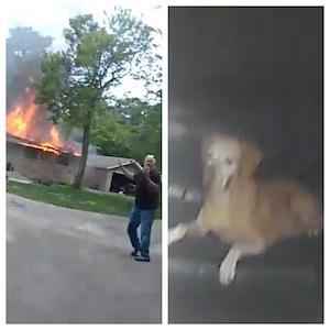 Bodycam footage of a Caledonia House in flames and a stranded dog